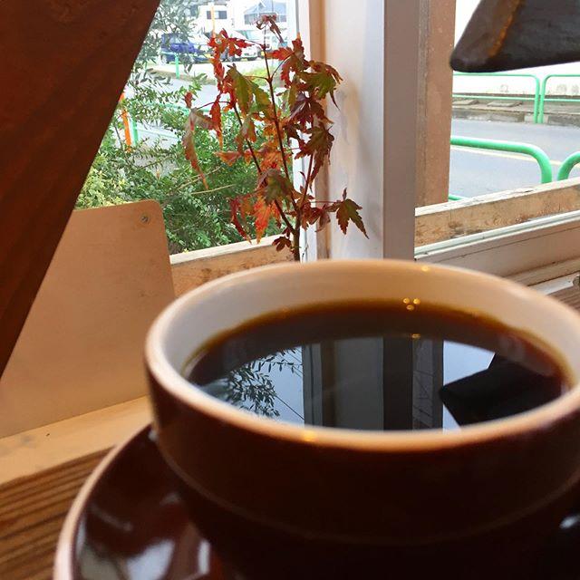 静寂 。  静寂という音が聞こえるような、そんな大気感。 店内の紅葉も紅葉しています。  こんな日には、思い出したようにネルドリップ。 パプア・ニューギニアをゆったりと。